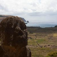 Tukuturi, an unusual bearded kneeling moai.