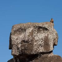 Moai and Caracara